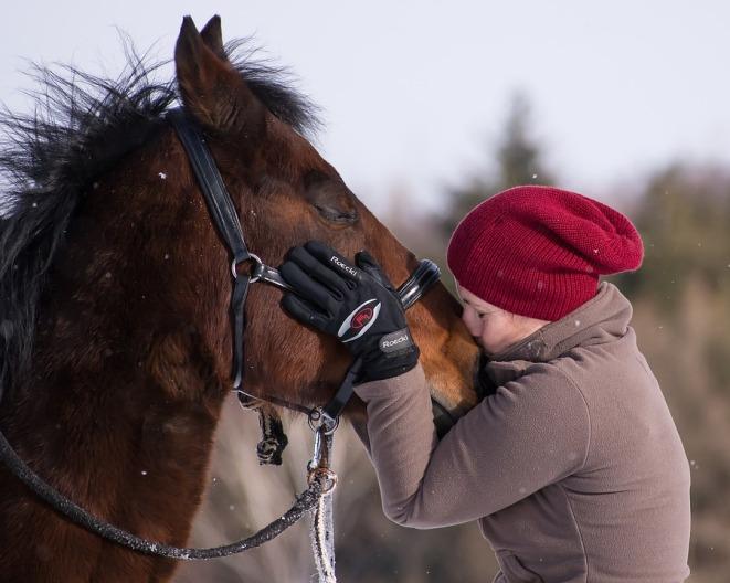 horse-kiss