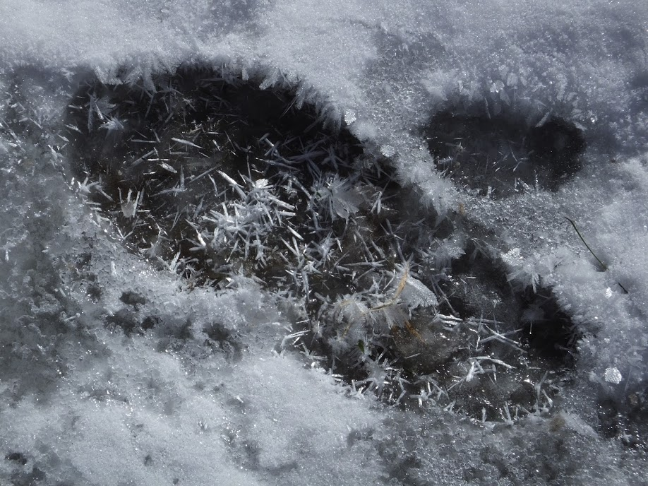 SnowCrystalFootprintChristianne