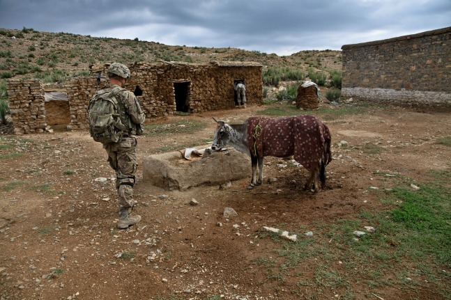 Soldier_With_Cow