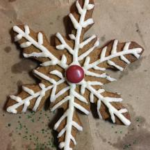 GingerbreadSnowflake