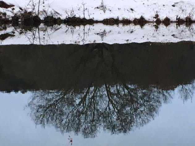 SnowPondReflection