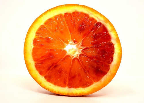 blood-orange-3170545_1920