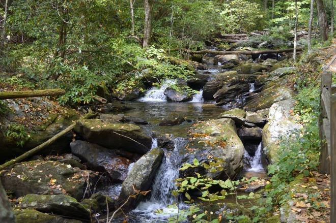 Georgia-Stream