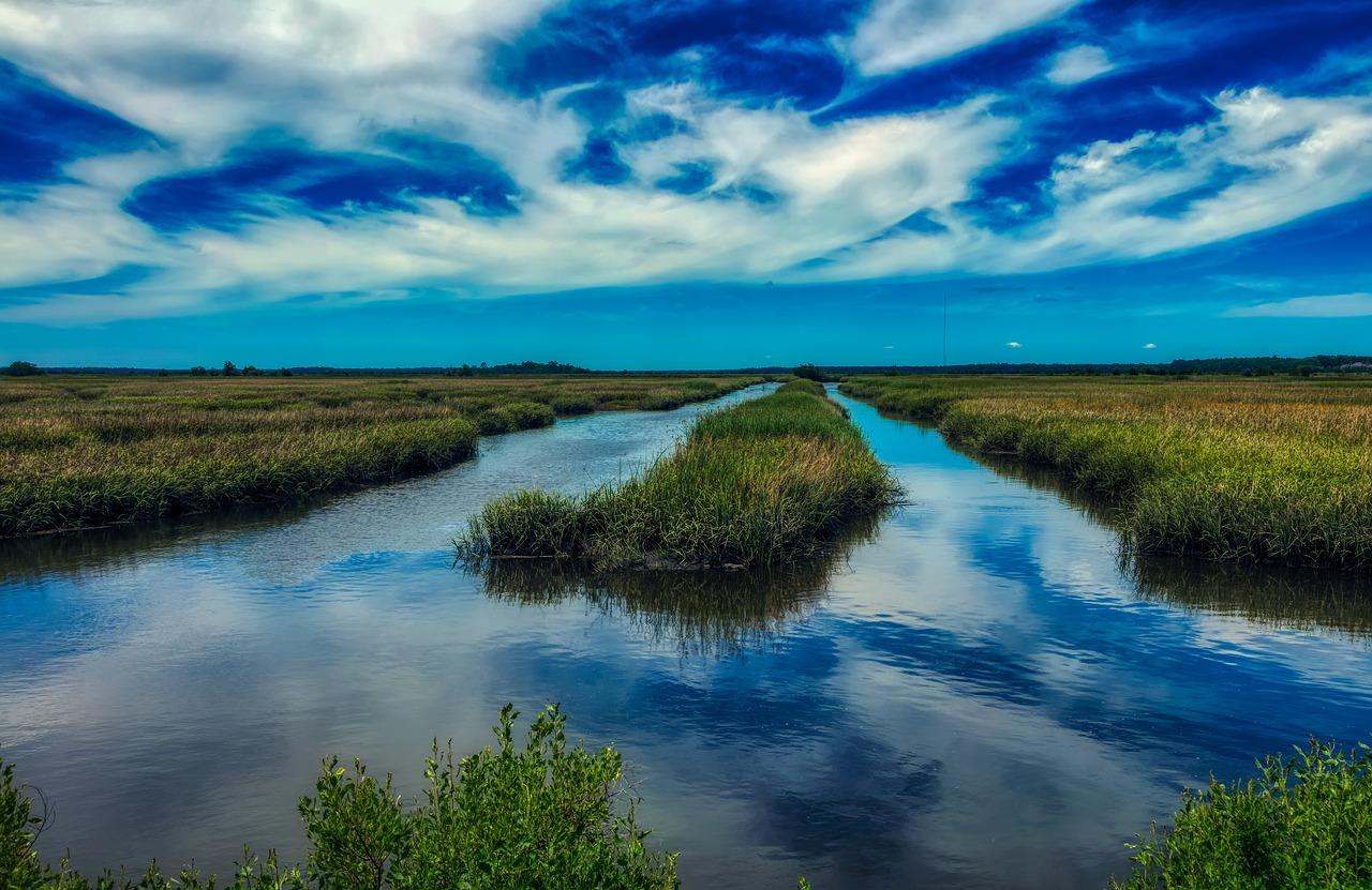 south-carolina-marsh